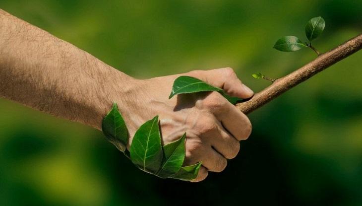 Aceite respetuoso con el medio ambiente